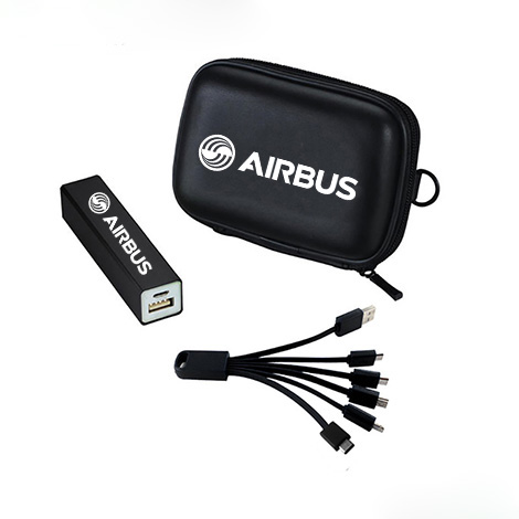 Power Bank Kit with multi charging cable